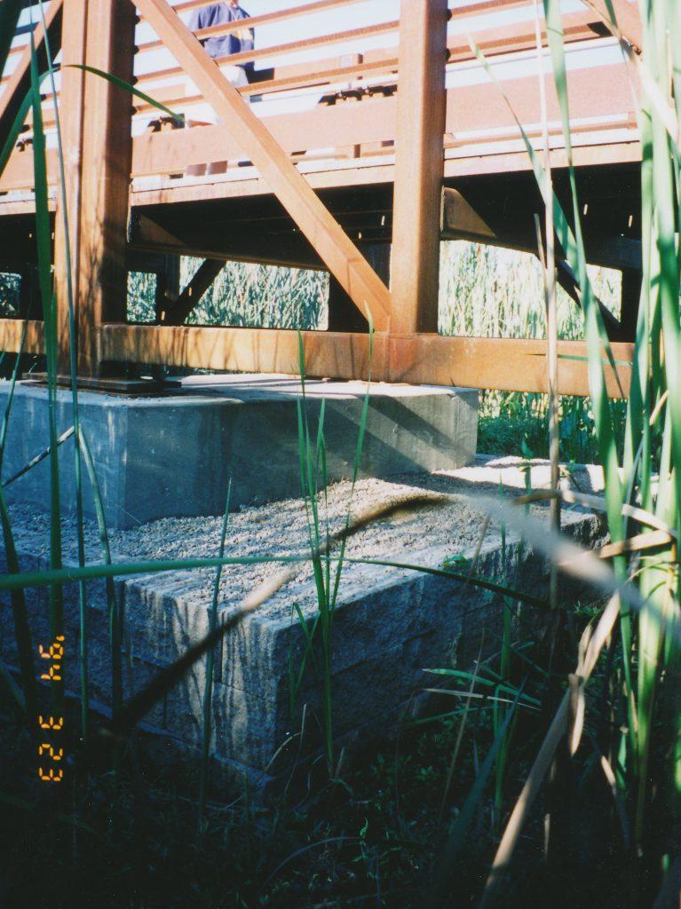 cosumnes_river_0014